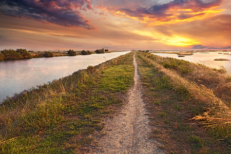 44177049 - picturesque landscape at sunset of the wetland, a long straight path across the lagoon in the natural reserve valli di comacchio, near ferrara, emilia romagna, italy
