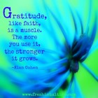 Gratitute, like faith, is a muscle.